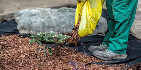 Why You Should Lay Mulch Before Winter Strikes, Burnsville, Minnesota