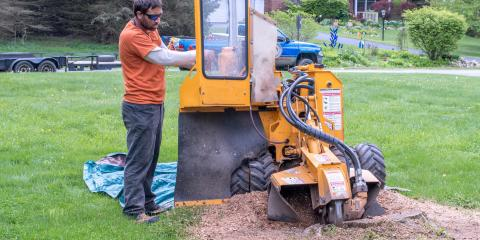 3 Tips for Using a Stump Grinder, Hamilton, Ohio