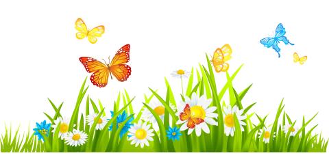 Sierra Tel Proudly Sponsors The 2018 Mariposa Butterfly Festival, Oakhurst, California