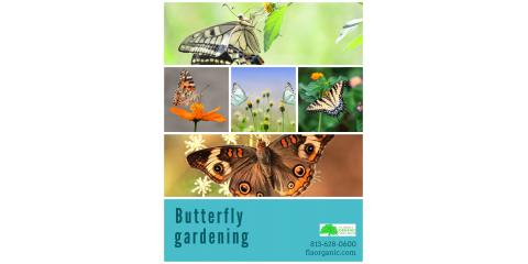 Butterfly Gardens in Florida, Brandon, Florida