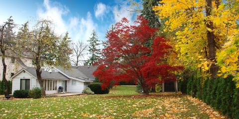 3 Septic Tank Care Tips to Prepare for Fall, Byhalia, Mississippi