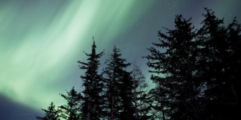 Rental Cabins Offer a Peaceful Retreat & Simpler Way of Life, Fairbanks, Alaska