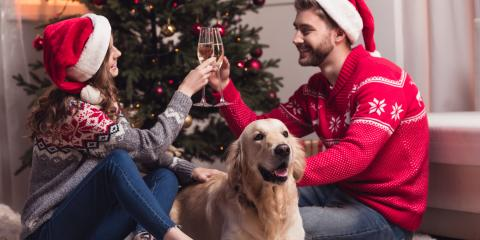 5 Holiday Foods to Keep Away From Pets, Cabot, Arkansas