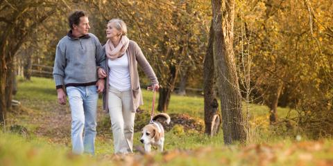 3 Tips to Keep an Older Dog at a Healthy Weight, Elk Grove, California