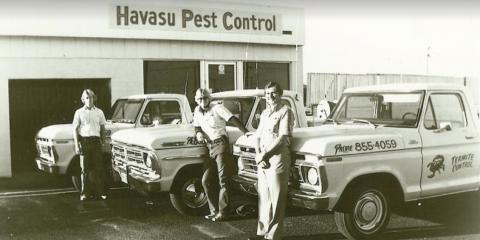Here's Why Havasu Pest Control Is the Best in the Business, Lake Havasu City, Arizona