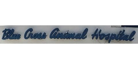 Blue Cross Animal Hospital, Veterinarians, Health and Beauty, Honolulu, Hawaii