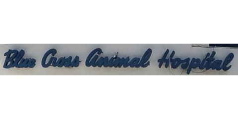 Blue Cross Animal Hospital, Veterinarians, Health and Beauty, Honolulu, Hawaii
