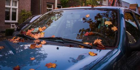 4 Car Care Tips for Fall, Columbia, Missouri