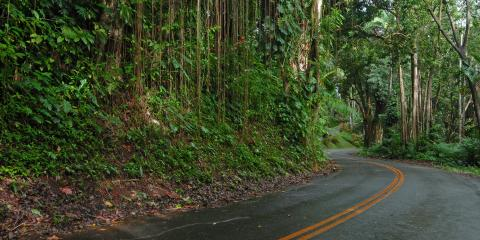 3 Tips for Driving Safely This Holiday Season, Honolulu, Hawaii