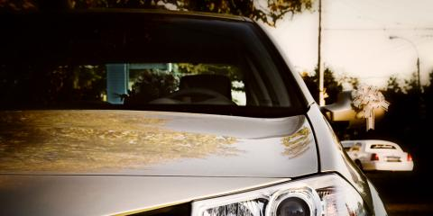 Reduce Your Risk of Theft with Car Window Tinting, Honolulu, Hawaii