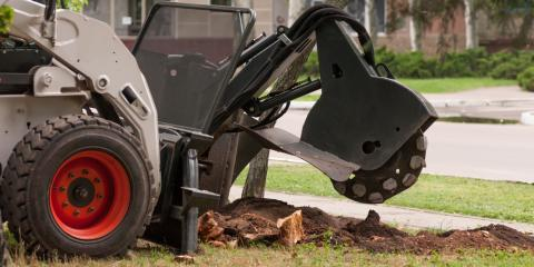 How Are Stump Removal & Stump Grinding Different?, Anchorage, Alaska