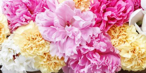 Considering Carnations? Think About the Color!, High Point, North Carolina