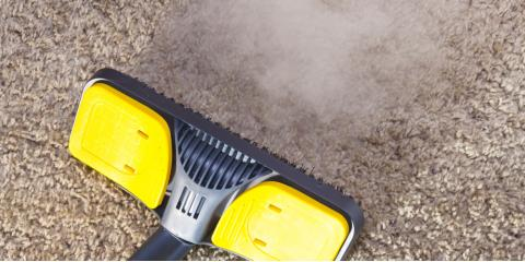3 Ways Regular Carpet Cleaning Promotes a Healthier Environment , Elko, Nevada
