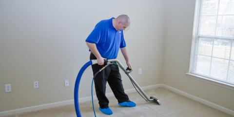 How Often Should You Get Your Carpet Professionally Cleaned