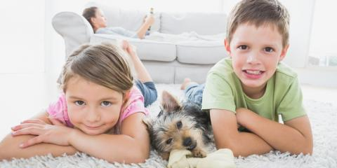 How to Determine if It's Time for a Carpet Cleaning, High Point, North Carolina