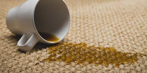 Thorough Carpet Cleaning Service in 7 Simple Steps, Kalifornsky, Alaska