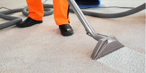 3 Carpet Cleaning Tips to Prepare for the Holidays, Walton, Kentucky