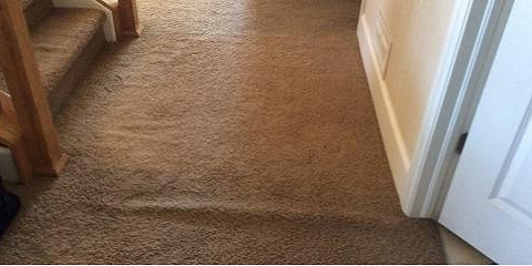 Save Money With Carpet Stretching From Denver's Repair Experts, Aurora, Colorado