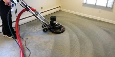 Top 4 Questions to Ask Your Carpet Cleaning Company, La Crosse, Wisconsin