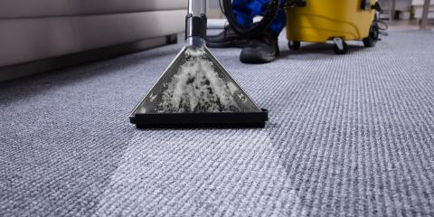 How Often Do You Need Professional Carpet Cleaning
