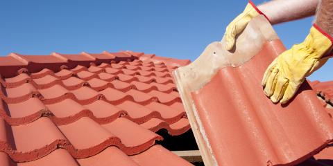 3 Animals That Affect Your Roof & Home, Centerville, Ohio