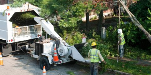 Top 3 Things to Consider When Choosing an Arborist in Heath, OH, Millersport, Ohio