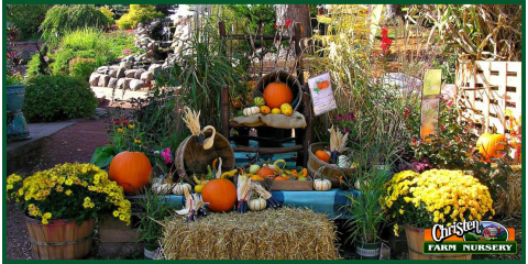3 Landscaping And Design Trends For Fall From Christen Farm Nursery, Holmen, Wisconsin