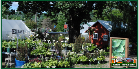 Create Your New Outdoor Oasis With Christen Farm Nursery's Landscaping & Design Computer Program, Holmen, Wisconsin