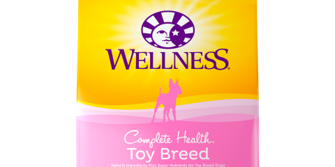 Available wellness puppy and adult , Manhattan, New York