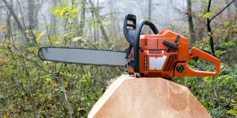 Small Engine Repair Company Explains How to Replace Chainsaw Blades, Ewa, Hawaii