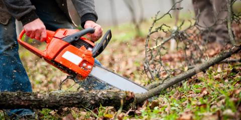 Reasons STIHL® Chainsaws Are Ideal for Any Sized Cutting Job, Brookhaven, New York