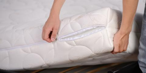 4 FAQ About Bed Bugs, Charleston, Arkansas