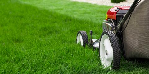 5 Easy Lawn Care Tips, Charlotte, North Carolina