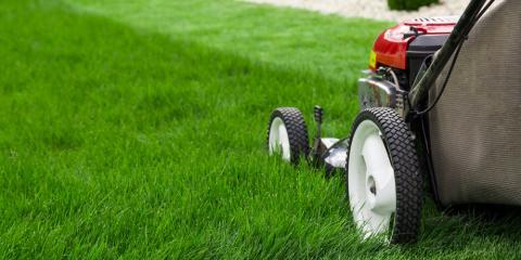 5 Easy Lawn Care Tips, Charlotte, North Carolina