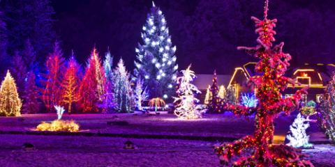 3 Ways to Use Holiday Lighting In Your Landscape Design, Lyndhurst, Virginia