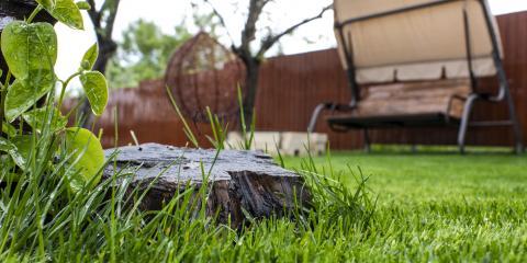 5 Benefits of a Stump Grinder, Chewelah, Washington