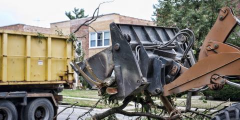 Top 3 Situations When Tree Removal Is Absolutely Necessary, York, South Carolina