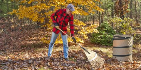 5 Fall Maintenance Tips for Your Landscaping, Scioto, Ohio
