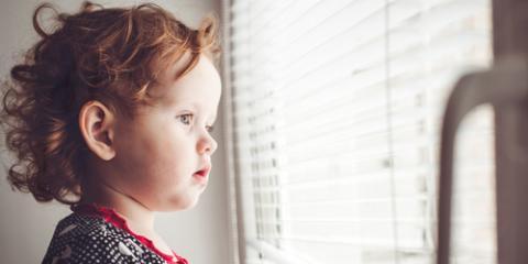 3 Reasons Homeowners Prefer Hunter Douglas® Blinds, Rochester, New York
