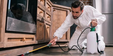 4 Common Pest Control Myths, White Oak, Ohio