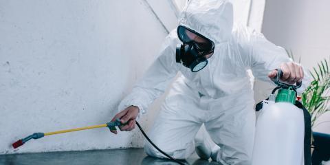 5 Tips for Combating Bedbugs, White Oak, Ohio