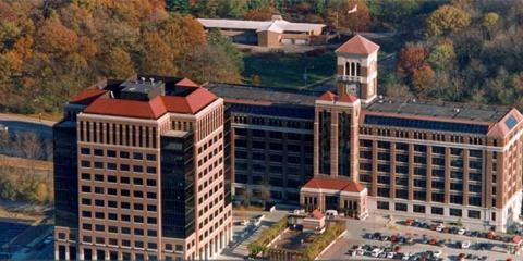 Bailey & Company Benefits Group Welcomes Shelby Hendy to The Team, Cincinnati, Ohio
