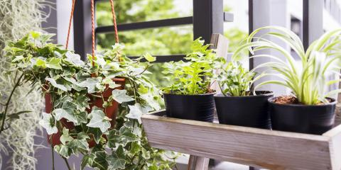 3 Ways to Reduce Moisture in the Home, Cincinnati, Ohio