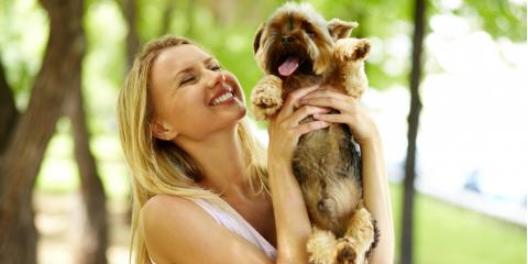 5 Exciting Activities You & Your Dog Will Love This Summer, Newport-Fort Thomas, Kentucky
