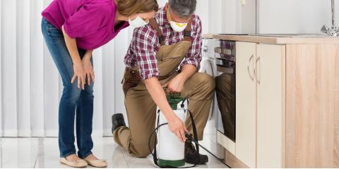 Why Follow-Up Appointments Are an Important Part of Pest Control, Springfield, Ohio