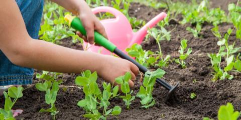 5 Tips to Prepare Your Garden for Spring, Colerain, Ohio