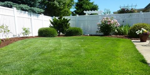 Beautify Your Home & Save the Earth With Lawn Care & Landscape Services, Springfield, Ohio