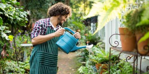 Tips for Watering Your Plants from Cincinnati's Lawn Care Pros, West Chester, Ohio