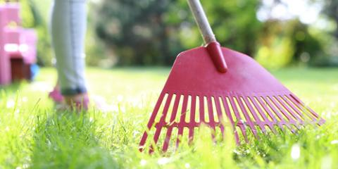 When Should I Start Spring Lawn Care?, Cincinnati, Ohio