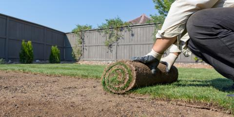 5 Questions to Ask a Sod Installation Expert, Anderson, Ohio